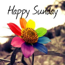 happy-sunday
