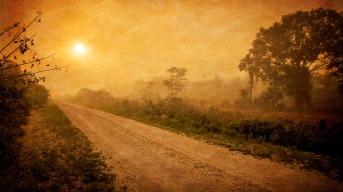 road-871849_960_720