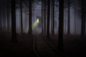foggy-545838_1280