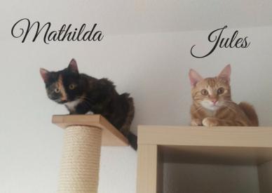 Mathilda_Jules